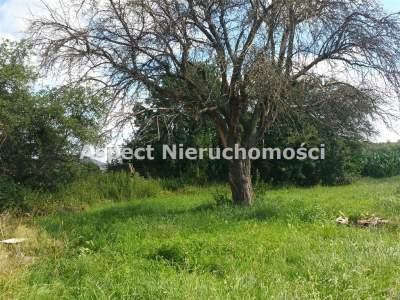 Häuser zum Kaufen  Różan                                      | 106 mkw