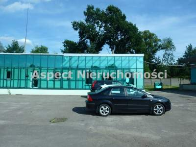 Commercial for Sale  Rybnik                                      | 317 mkw