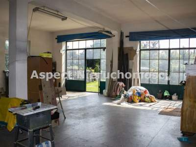Local Comercial para Alquilar  Bytom                                      | 530 mkw