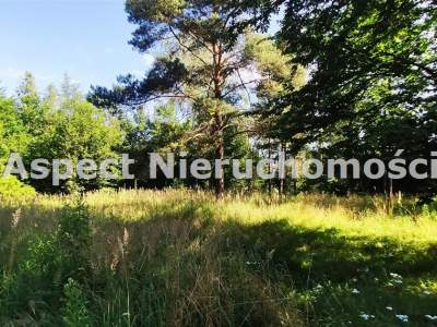 Gewerbeimmobilien zum Kaufen  Wręczyca Wielka                                      | 1351 mkw