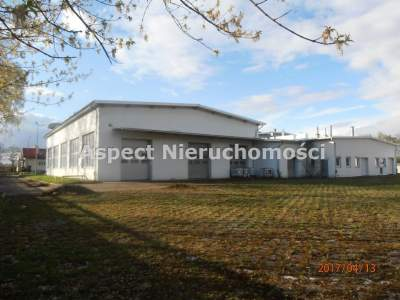 Commercial for Sale  Kutno                                      | 2867 mkw