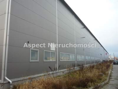 Gewerbeimmobilien zum Kaufen  Kutno                                      | 3840 mkw