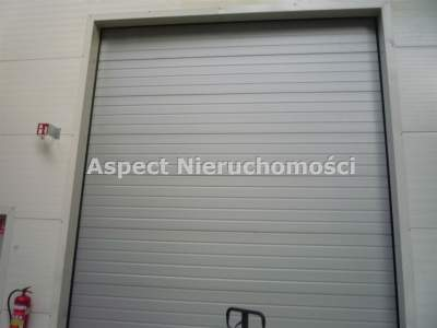коммерческая недвижимость для Продажа  Kutno                                        3840 mkw