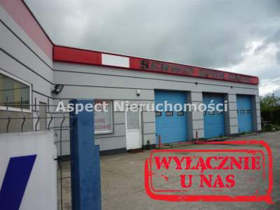 Commercial for Sale  Kutno                                      | 1000 mkw