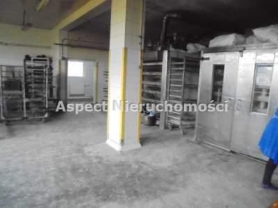 Commercial for Sale  Zakrzew                                      | 260 mkw