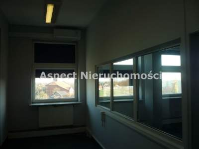 Commercial for Rent   Kutno                                      | 240 mkw