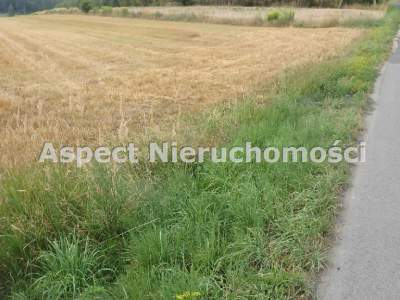 Lots for Sale  Rybnik                                      | 1265 mkw