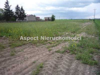Lots for Sale  Kutno                                      | 25051 mkw