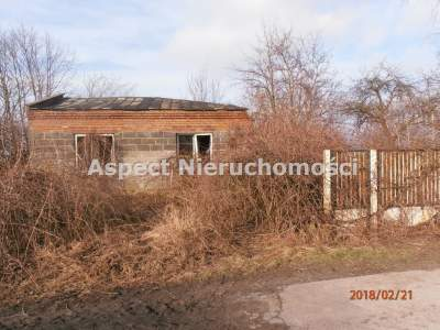 Lots for Sale  Dąbrowice                                      | 11100 mkw