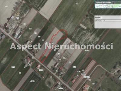Grundstücke zum Kaufen  Strzelce                                      | 3000 mkw