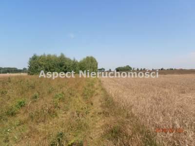 Grundstücke zum Kaufen  Nowe Ostrowy                                      | 20100 mkw