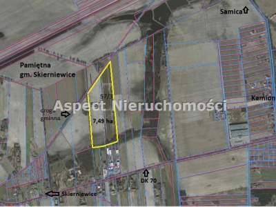 Parcela para Alquilar  Skierniewice                                      | 74900 mkw