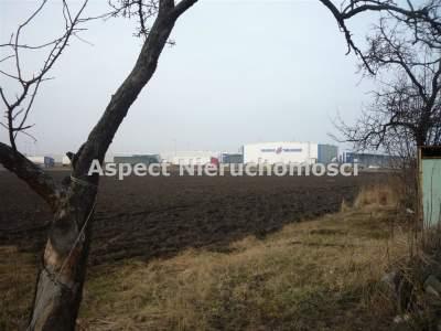 Grundstücke zum Kaufen  Kutno                                      | 28000 mkw