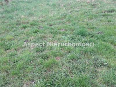 Lots for Sale  Żory                                      | 967 mkw
