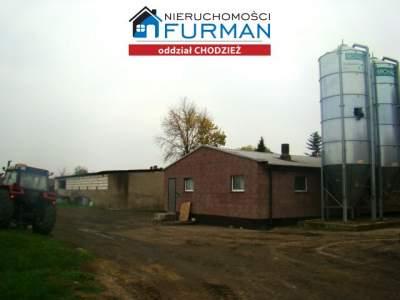 Häuser zum Kaufen  Budzyń                                      | 6736 mkw