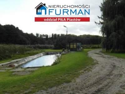 Local Comercial para Alquilar  Szydłowo (Gw)                                      | 234200 mkw