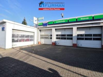 Commercial for Sale  Piła                                      | 499 mkw