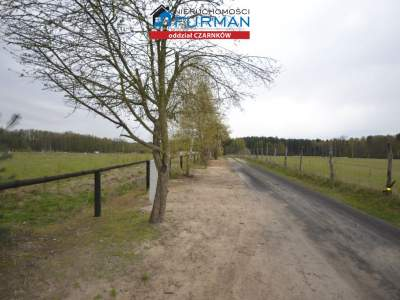 Lots for Sale  Lubasz                                      | 3067 mkw