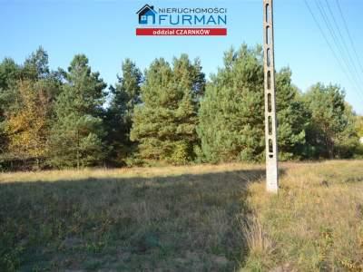 Grundstück zum Verkauf  Czarnków (Gw)                                      | 12100 mkw