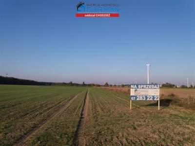 Parcela para Alquilar  Margonin (Gw)                                      | 907 mkw