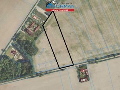 Grundstücke zum Kaufen  Rogoźno (Gw)                                      | 12800 mkw