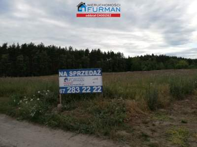 Lots for Sale  Budzyń                                      | 3870 mkw