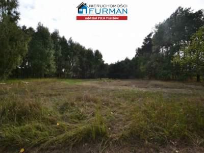 Grundstück zum Verkauf  Trzcianka (Gw)                                      | 28600 mkw