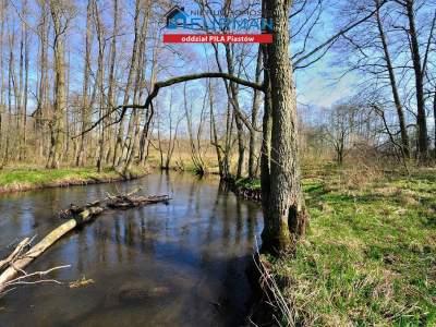 Grundstücke zum Kaufen  Szydłowo (Gw)                                      | 22300 mkw